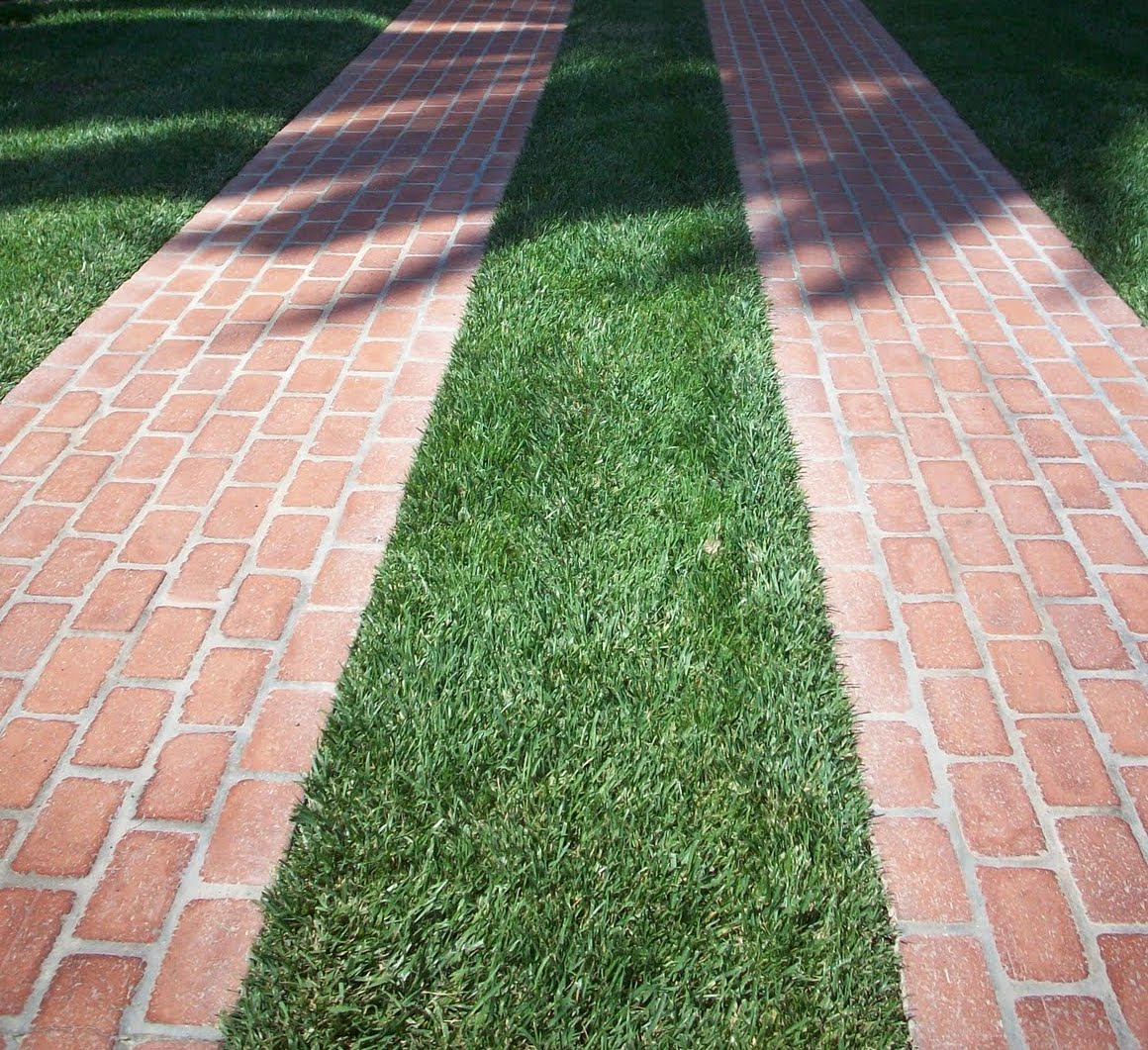 Sustainable Landscapes Designscapes Of Nc Ltd