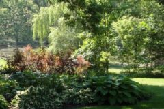 Raleigh Landscape Contractors, Raleigh Landscaping, DesignScapes