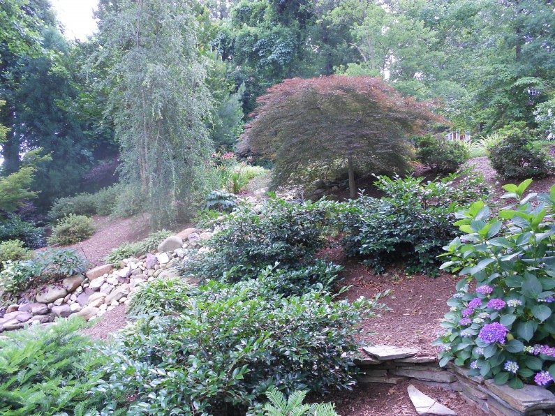 Landscaping services raleigh nc designscapes of nc ltd for Landscape design raleigh