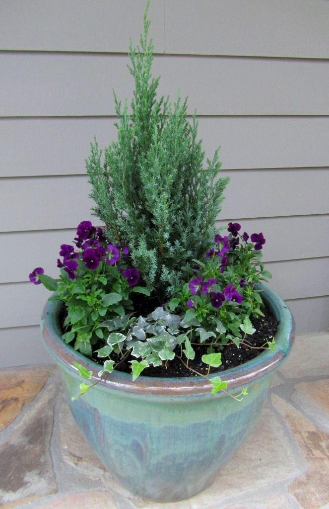 Container Gardening, Holiday Containers, Holiday Decorating, Christmas, Winter Containers