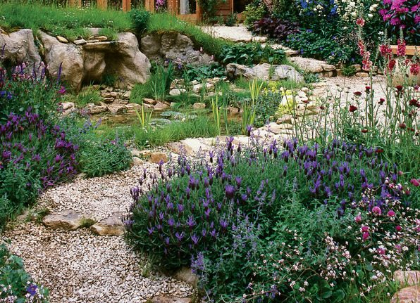 Raleigh Landscaping, Raleigh Landscape Contractors, Raleigh Garden Designers, Garden Design, Raleigh Landscapers, Landscaping, Fragrant Flowers, Water-Wise Gardens, Watering, Sustainable Gardens, Sustainable Landscapes, Sustainability