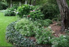 Raleigh Landscaping, Raleigh Landscaping Contractors, Raleigh Garden Design