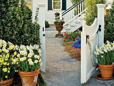 Raleigh Landscape Contractors, Raleigh Landscaping, Raleigh Garden Designers, Garden Design, Container Gardens, Container Gardening