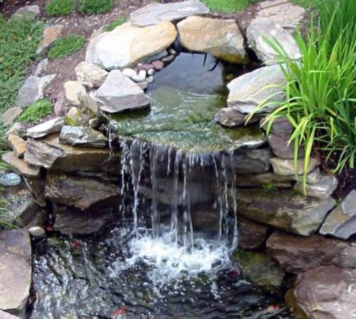 Raleigh Landscaping, Raleigh Landscape Contractors, Raleigh Garden Designers, Garden Design, Raleigh Landscapers, Landscaping, Pollinator Gardens, Pollinators, Fragrant Flowers, Scents of Spring, Scents of Summer, Senses, Sensory Gardens